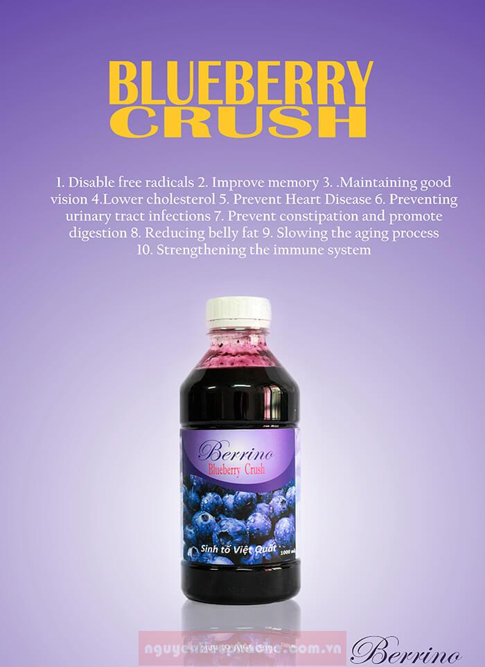 berrino việt quất 1