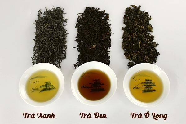 Cách phân biệt các loại trà như trà đen, trà xanh, trà ô long