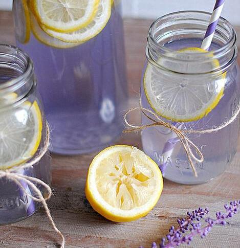 Syrup Hoa Oải Hương - Lavender 3
