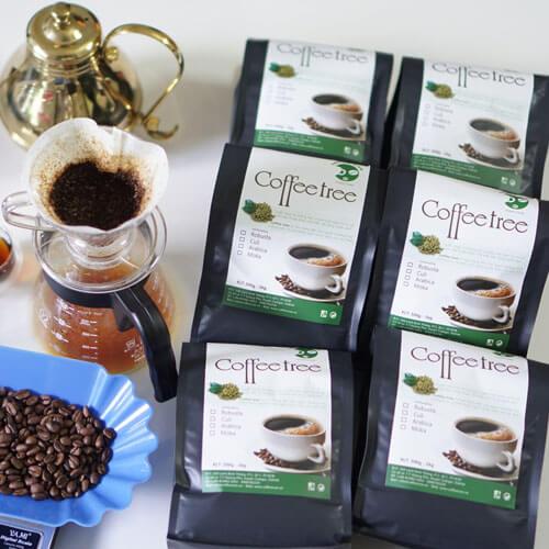 Coffee Tree Đặc Biệt